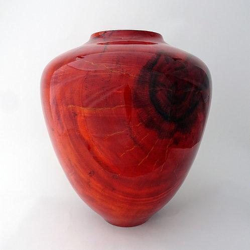 Albizia Root Ball Vessel