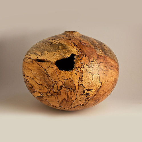Spalted Wormy Natural Maple Hollow
