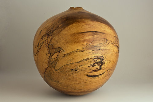 Spalted Drane Magnolia Hollow Form
