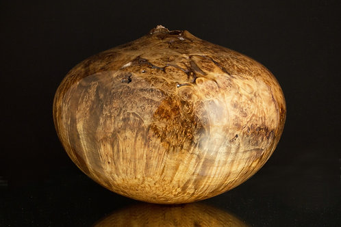Ultra Gloss Spalted Maple Burl Hollow