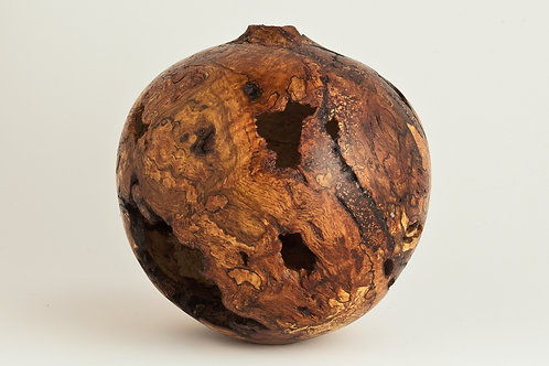 Small Voided Oak Burl Hollow