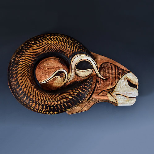 Bighorn Lifespiral