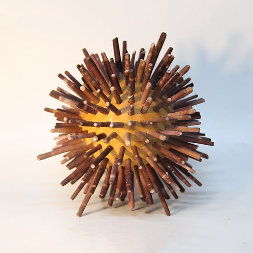 Sea Urchin Box