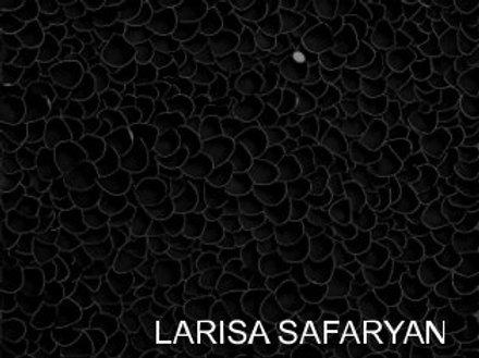 Larisa Safaryan: The Sublime Art of Larisa Safaryan