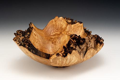 Maple Burl Tri-Crater Bowl