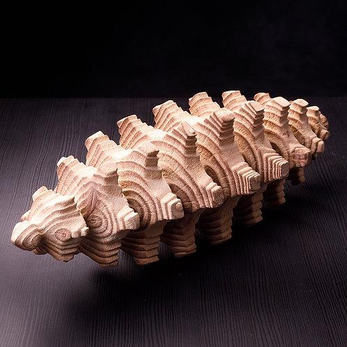Spine Form