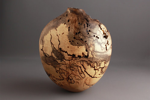 Wormy Spalted Holly Hollow Form