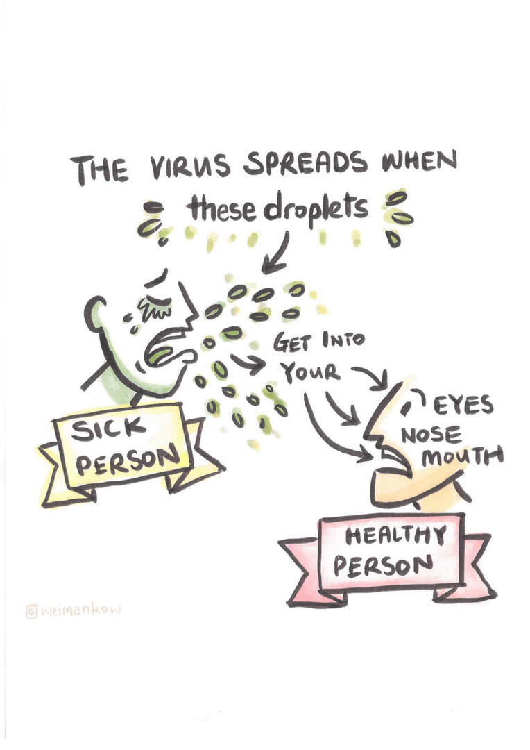 corona virus-02.png