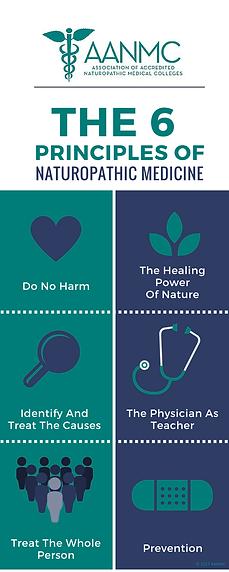 6-principles-of-naturopathic-medicine.pn