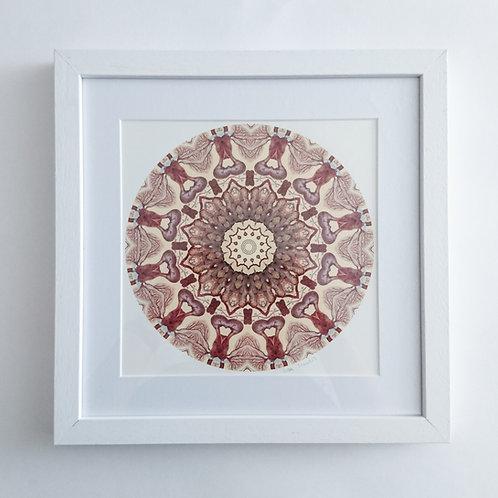 Intestines Mandala Framed Print
