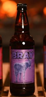 Bray ABV 4.0% (500ml)