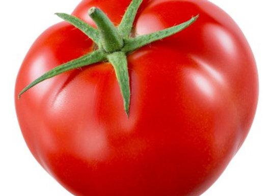 Tomate Greffee Ronde