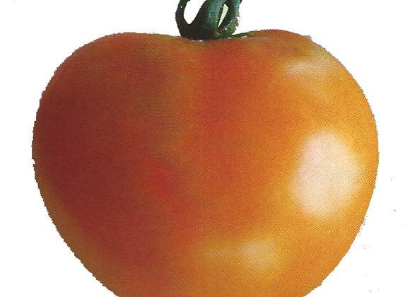 Tomate Orange Queeen