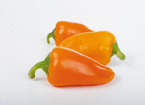 Poivron Snackor Orange