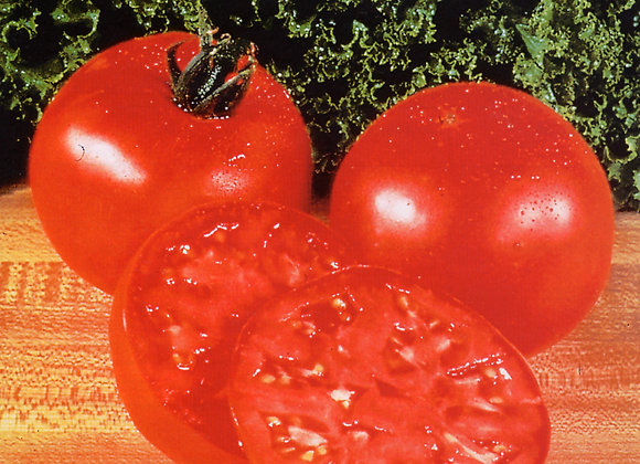 Tomate Geante d'Yvours