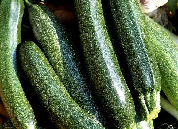 Courgette longue verte Kimber