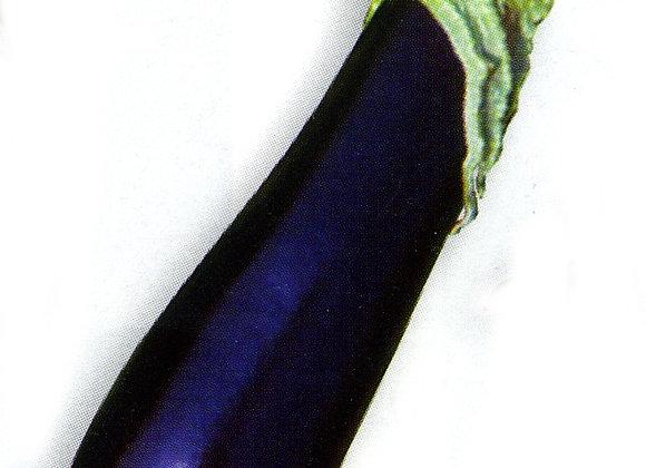 Aubergine Greffee Sultane longue