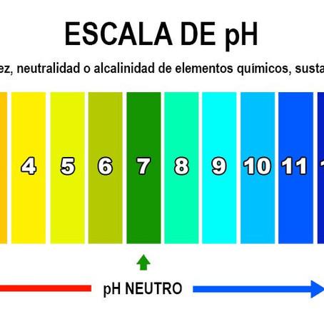 Nutrición Celular y Alimentación Alcalina: Joven, saludable y energizado siempre.