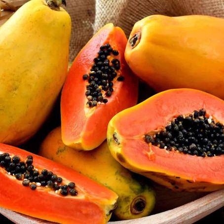 Los 10 mejores alimentos para fortalecer tu sistema inmunológico