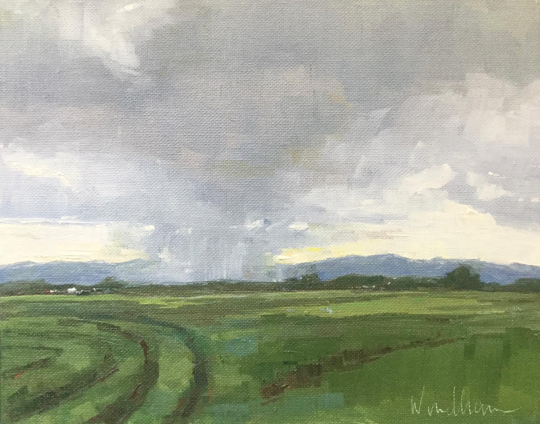 Ranch rain
