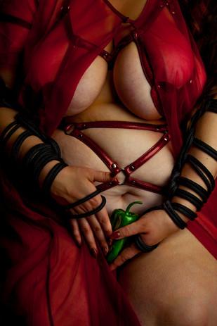 Carina in a Gnat harness