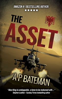 The Asset - Ebook Cover2.jpg