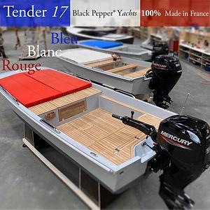 Tender 17 100% Made in France.JPG