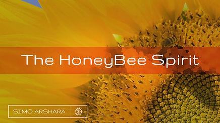 Honeybee MYT.jpg