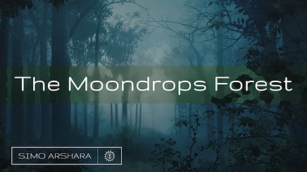 Moondrops MYT.jpg