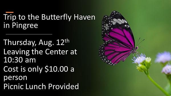 Butterfly Trip.jpg