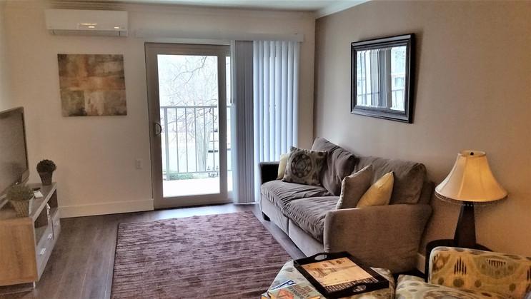 Premier Series Livingroom