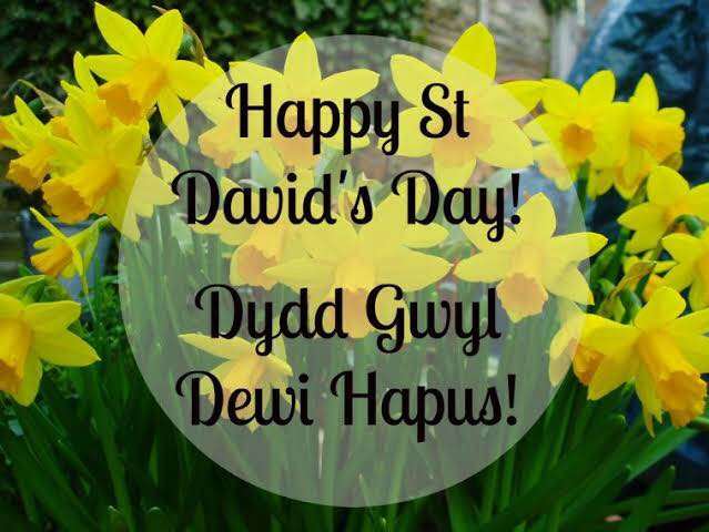 st david's day daffodils