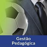 gestao-pedagogica.jpg