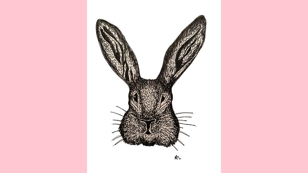 Bunny Greetings Card