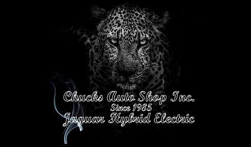 mean jaguar white trim letter logo with