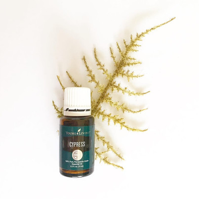 Cypress and Release