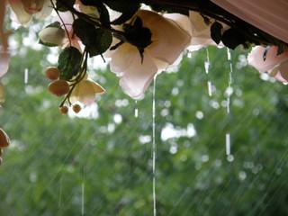 5 Ideas for a Rainy Wedding