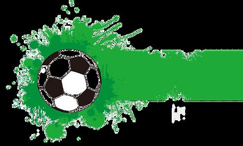 kisspng-ncaa-division-i-football-bowl-su