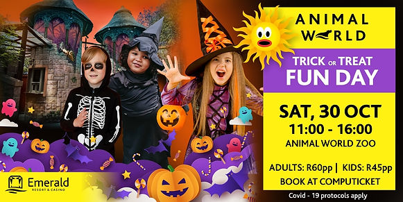 Trick or treat daytime events banner day.jpg
