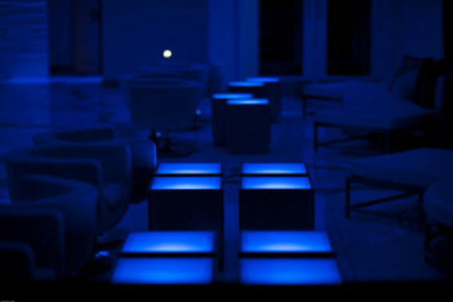 night-bar-club-security-denver