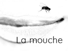 LA MOUCHE  NOIR ET BLANC.jpg
