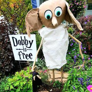 31. Dobby is Free