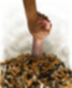 Do you want give up your smoking habit?