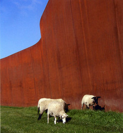 the-sheep-like-it_6852519821_o