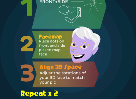 FACETOPO APP: STEP-BY-STEP