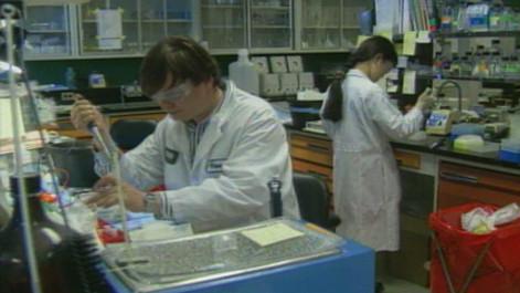 scientists-at-work_6944643617_o.jpg