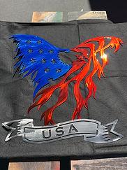 EAGLE USA BANNER-5.JPG