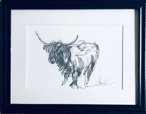 Highland Cow Print for Sale Mounted and Framed
