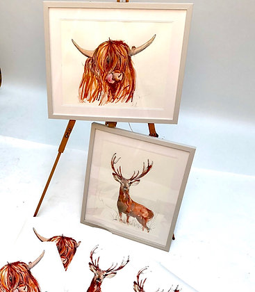 STAG For Sale (Limited run of 20)  Framed