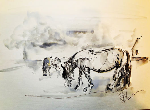 Horse sketch hand drawn live on location
